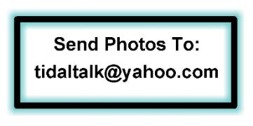 Send Photos and Personalization Info to: tidaltalk@yahoo.com
